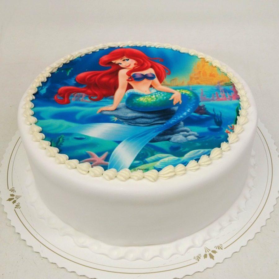 Ariel-kakku-19-3